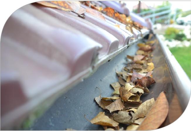 Rynny jesienią pełne liści - czyszczenie i konserwacja orynnowania