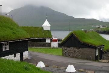 ekologiczny dach