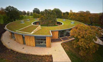 Zielone dachy z roślinnością
